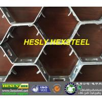 China 1Cr13 Hex steel, hex mesh,the biggest hexmesh manufacture in North china wholesale