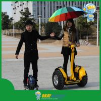 China Off Road Personal Transporter, Outdoor Motor Scooter, Motorized Scooters wholesale