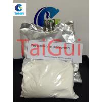 China Testosterone Isocaproate Test Raw Steroid Powders ISO Certificated wholesale
