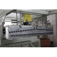 China cast pp film machine wholesale