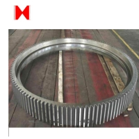 China Cement Mixer Micro 5000mm Steel Worm Gear on sale
