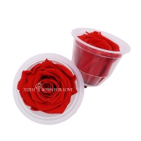 China 5-6cm Preserved Rose Heads For Home Decoration on sale