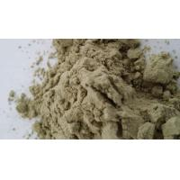China Natural water-soluble Spinach Extract Powder/Spray Drying Spinach Powder wholesale
