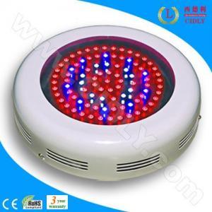 China 90W LED Indoor Grow Lighting wholesale