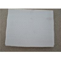 China High Temperature Resistant Polyester Mesh Belt With White Used For Sewage wholesale