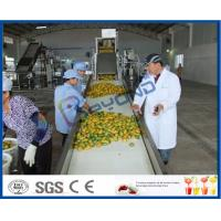 China Complete Turn key Project Mango Fruit Juice Processing Line High Engery Saving on sale