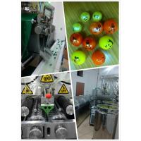 China 12 Inch And Small Capacity Servo Motor Paintball Encapsulation Machine With Formula Provide on sale