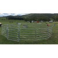 China 20 Round Corral Panels Inc Gate, Round Yard, Cattle Fences, Corral 14m Diameter wholesale