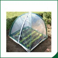 China PVC coated Garden tunnel greenhouse Home Garden Mini Greenhouse Warm Houses For Growing Trees wholesale