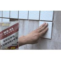 China Outdoor Strong Waterproof Tile Adhesive , Marble And Mosaic tiles adhesive wholesale