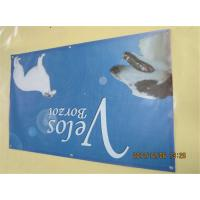 China One Side Custom Business Banners , Pvc Outdoor Trade Show Banners With Eyelets wholesale