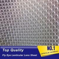 China Super transparent fly eye lenticular lens sheet 3d dot film for led diffusers fly eyeballs lens sheet factory supplier wholesale
