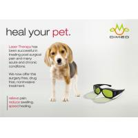 China Dimed Laser Treatment For Veterinary Pain Management , 810 / 910 / 980nm wholesale