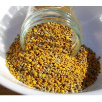China High Quality Cheap Price Mixed Bee Pollen wholesale