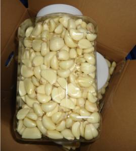 China 2019 China Fresh peeled Garlic on sale wholesale