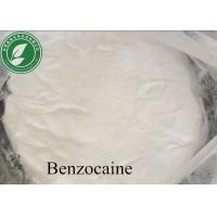 China High Purity Local Anesthetic Drugs Powder Benzocaine With Safe Delivery wholesale
