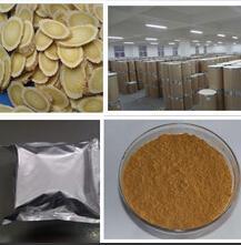 China Huperzine A, Huperzia serratum, Huperzia Serrata Extract wholesale