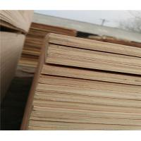 China low price packing grade plywood from china wholesale