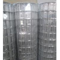 "China Hot-dipped Galvanized Welded Wire Mesh   3""X2"",2.7mm,1.2-1.8m wholesale"