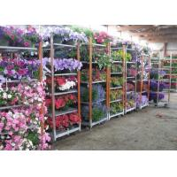 China Light duty movable flower trolley for greenhouse wholesale