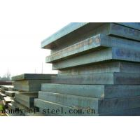 China Alloy Tool Steel Plate S136, 1.2316 wholesale