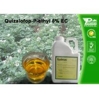 China Quizalofop-P-Ethyl 5% EC Grass Selective Herbicides Strong Weed Killer wholesale