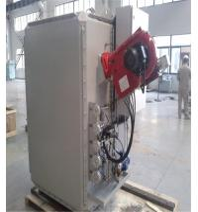 China 100Kg/h Medical Waste Incinerator/ Hospital Waste Incinerator with price wholesale