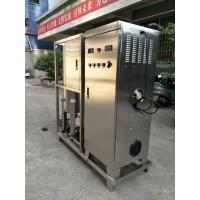 China YT-s-017 high concentration100g/h domastic wastewater water treatment ozone generator ozone machine  for sale wholesale