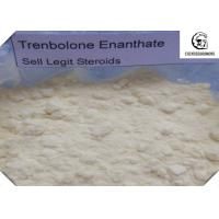 China CAS 472-61-546 Trenbolone Steroid With Male Hormone Drug Property , No Side Effect wholesale