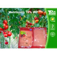 China Pre Emergence Herbicides For Potatoes , Tomatoes , Sugar Cane , Alfalfa wholesale