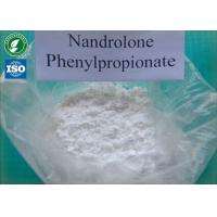 China Tightly packed Nandrolone phenylpropionatewith safe Delivery and 99% Purity white powders CAS 62-90-8 wholesale