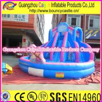 China Inflatable Frozen Water Slide wholesale