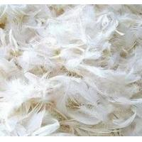 China 4-6cm grey duck feather wholesale