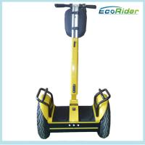 Street Two Wheels Self Balancing Electric Scooter 1000W 12 Months Warranty