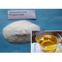 Natural Muscle Growth Raw Testosterone propionate CAS 57-85-2