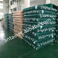 China Green Construction Building Safety Net, nylon polyethlene hdpe Plastic Type and Multifilament Style safety net wholesale