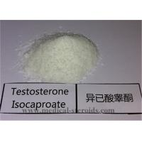 Buy cheap Natural Male Enhancement Anabolic Steroid Testosterone Isocaproate CAS 239-307-1Burning Fat And Muscle Building from wholesalers