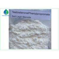 China 99% Purity Raw Hormone Powders Steroids Testosterone Phenylpropionate for Muscle Mass on sale