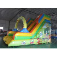 China Digital Printing Smurf Inflatable Water Slides For Adults , Plato PVC wholesale