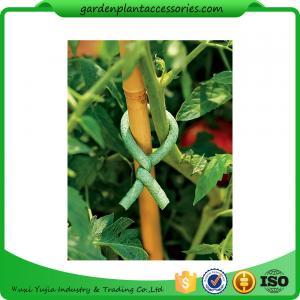 China Adjustable Soft Foam Garden Plant Ties , Sturdy Plastic Garden Ties Size m L:9.9 Color green 36.5*15.5*19 wholesale