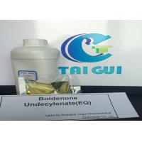Quality High Pure Boldenone Undecylenate / EQ Ganabol Muscle Gaining Steroids for sale