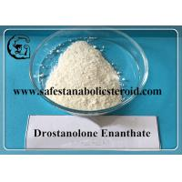 China Drostanolone Enanthate 472-61-145 Muscle Gain Effective Estrogen Blocker wholesale