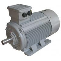 China Y2  Series IEC Standard Motor Three Phase Induction Cast Iron Motor Conformity With IEC34-1 wholesale