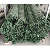 China Durable Plant Garden Support Green PE Coated Garden Stake wholesale
