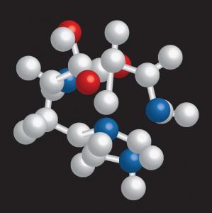 Food Grade L-Carnosine Nutrient Ingredients , Anti Aging Nutritional Supplements