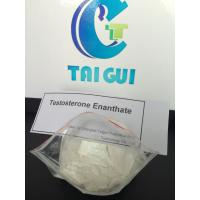 Quality Safe Injection Muscle Building Testosterone Enanthate CAS 315-37-7 for sale