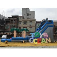 China Large Delphinus Delphis Custom Inflatable Water Slide For Kids / Adults wholesale