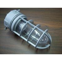 China TOPELE Energy Saving Outdoor Aluminum Vapor Proof Lights, Explosion-proof Lights Ip65 For Oil Platform wholesale