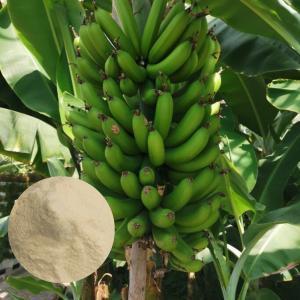 China Chelated Ca Mg Water Soluble Amino Acid Organic Fertilizer For Banana wholesale