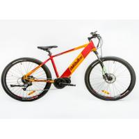 China Power Assist Mountain Bike , Specialised Electric Mountain Bike Brushless Controller wholesale